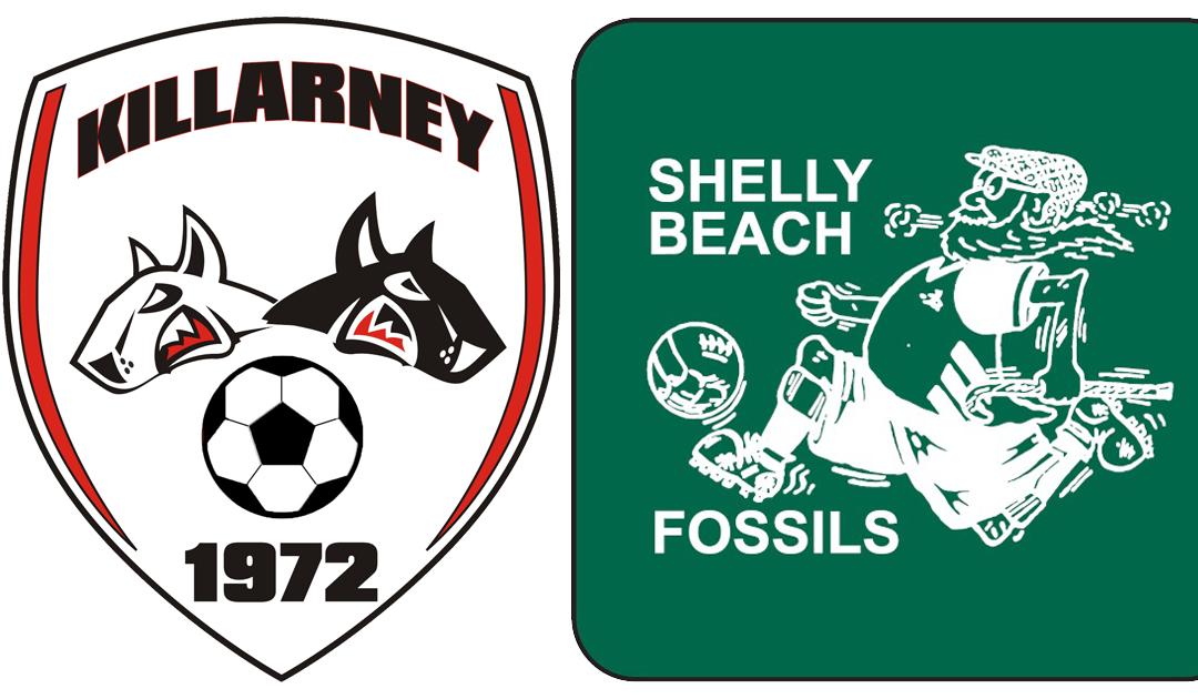 Shelly Beach Fossils (KDSC) Seeking O35 Players