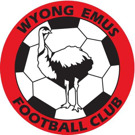 Wyong FC looking for WPL Players for 2021